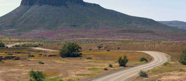 South African Northern Cape Travel Tips